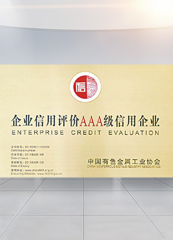 "China Non-Ferrous Metals Industry Association ""AAA Credit Rating Enterprise """